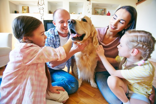 A young friendly family of four cuddling their pet